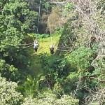 Kohala Coast zip-lining