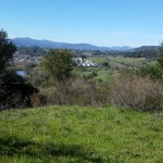 A view of Healdsburg from the trail.