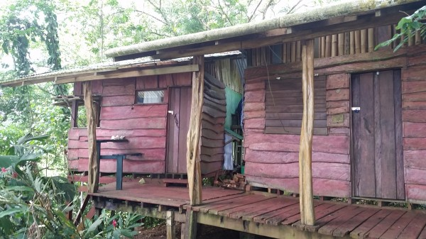 Cabins, made from wood grown on site at Up In The Hill.