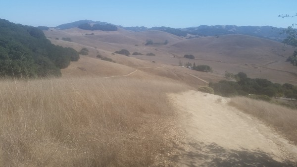 Beautiful view at Helen Putnam Regional Park, Petaluma.